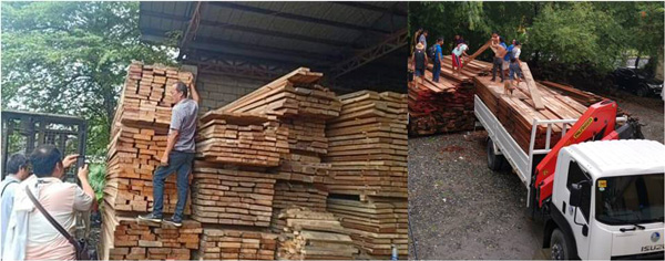 Hot lumber seized in Bulacan