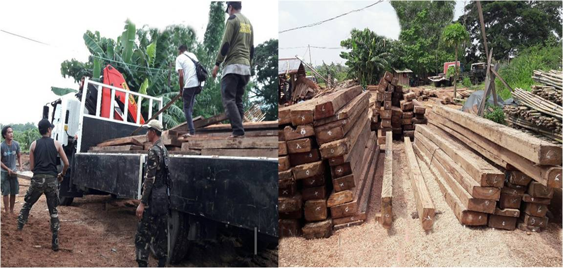 DENR seizes illegally-cut lumber in N. Ecija